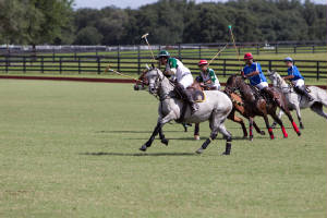 OxfordPolo/_MG_0926.jpg